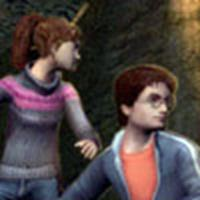 Virtual Harry & Hermione