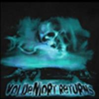 'Voldemort Returns' t-shirt