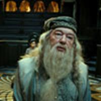 Dumbledore at the Wizengamot