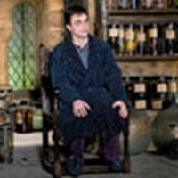 Harry in Snape's potions room