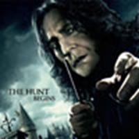 Snape banner